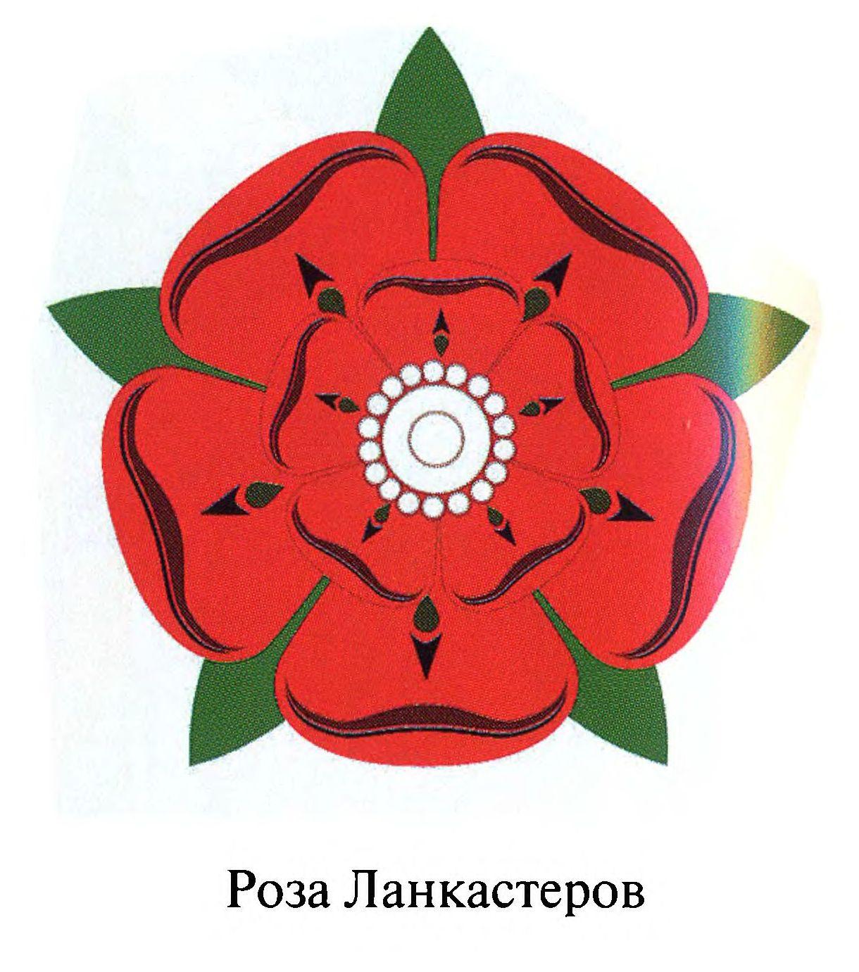 Символ англии-красная роза