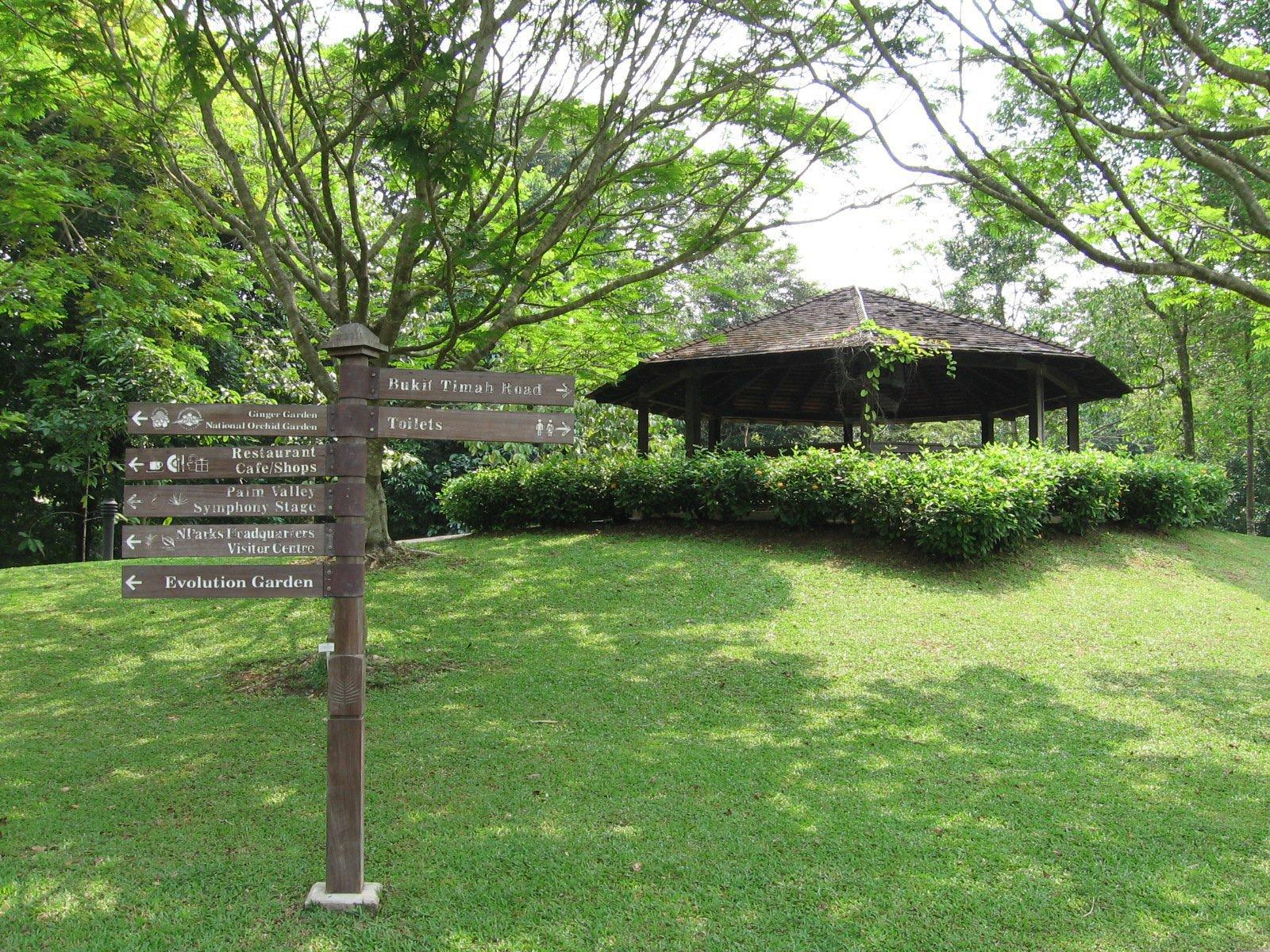 Singapore_Botanic_Gardens,_Bukit_Timah_Core,_Sep_06