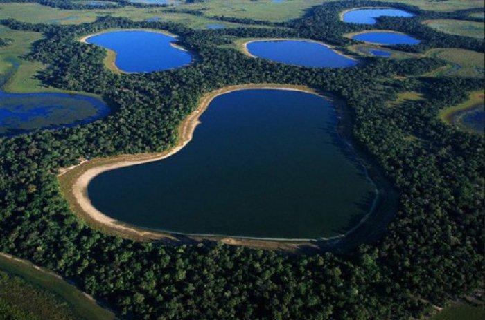 brazilia-priroda