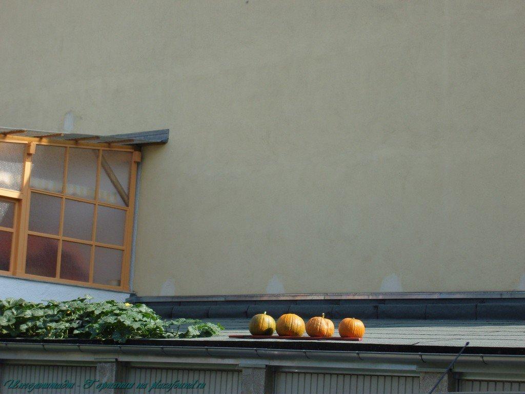 Достопримечательности Ингольштадта - фото 6