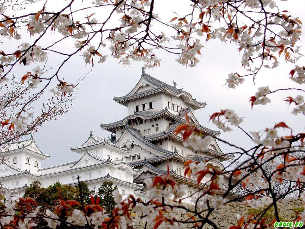 Картинки по запросу фото древней японии