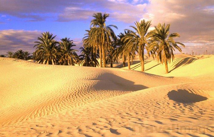 sahara-pustinya