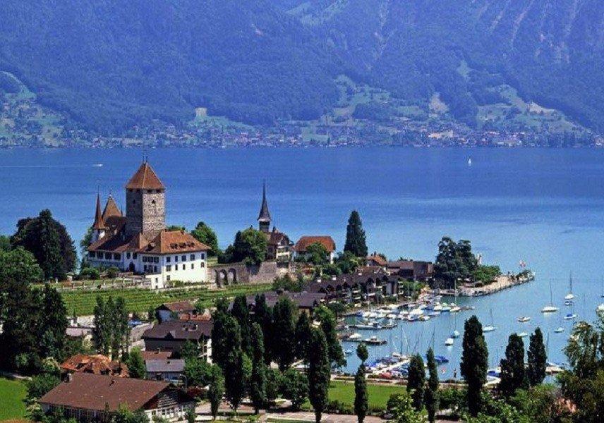 shweicaria