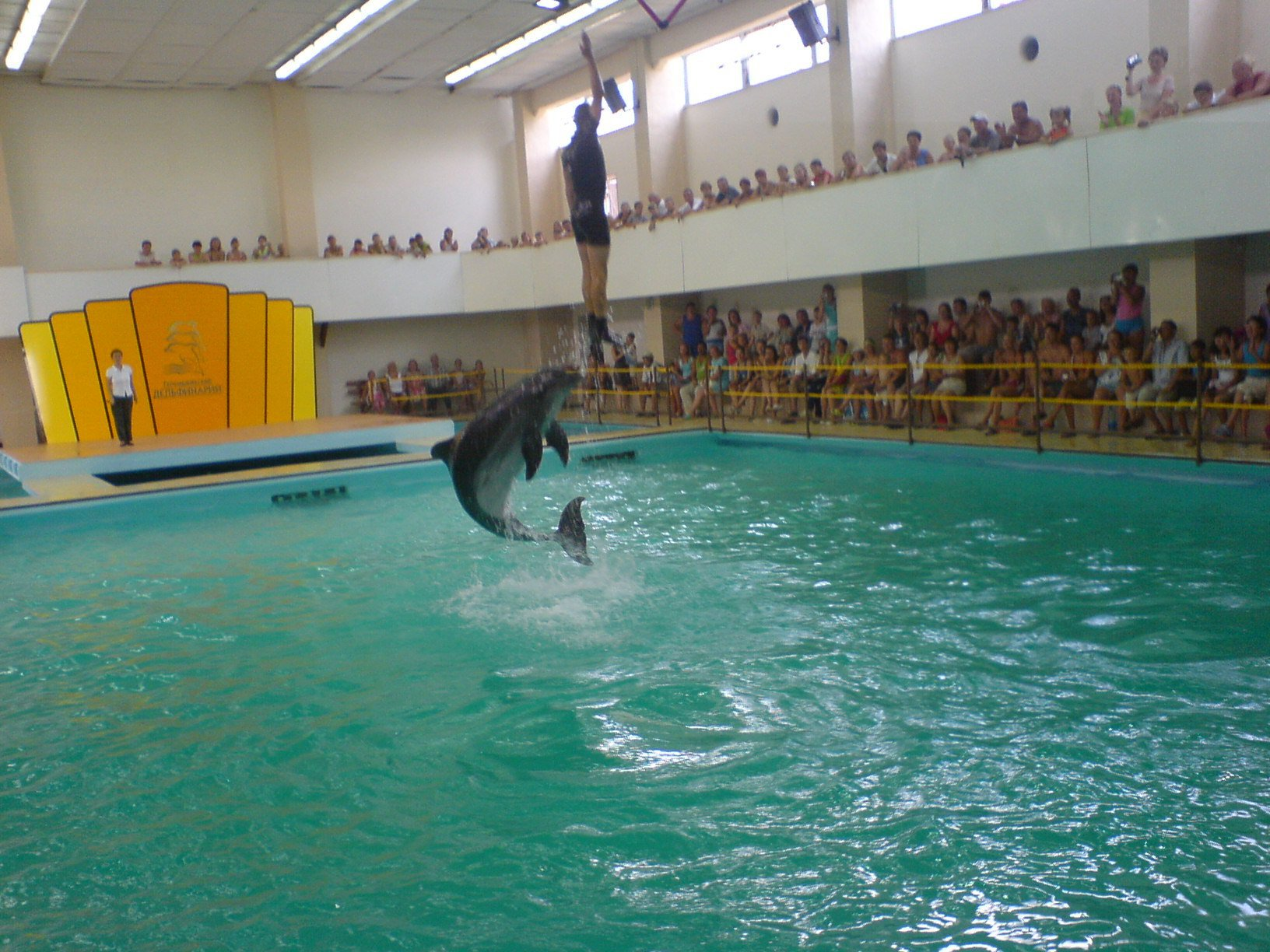 gelendgik-delfinarii-3