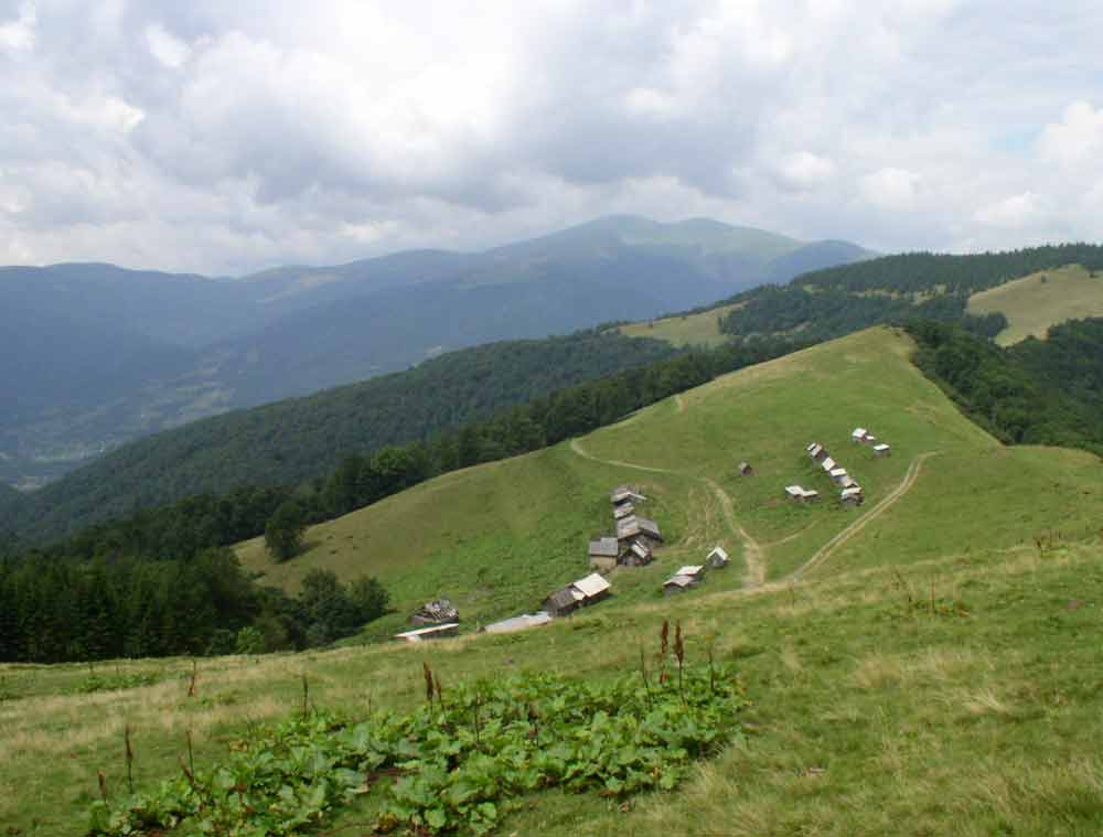 gory_karpaty_big