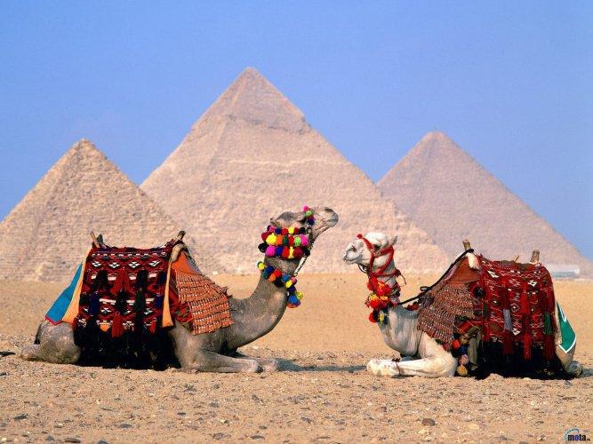 egipet4